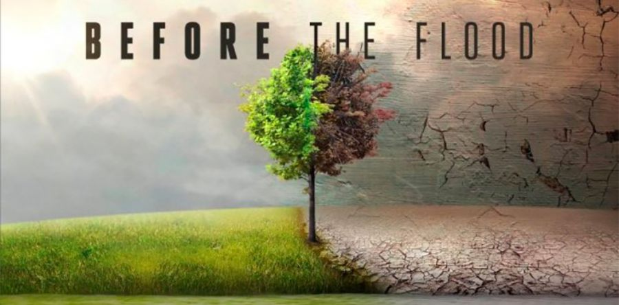 Before the flood before-the-flood-quad-900x444