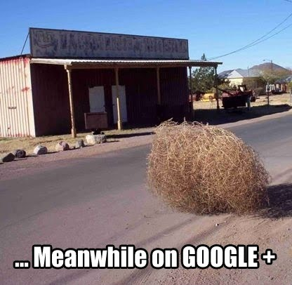 meanwhile-on-google+