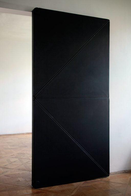 evolution-door