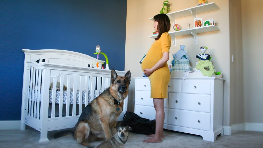 timelapse-of-pregnancy-in-90-seconds