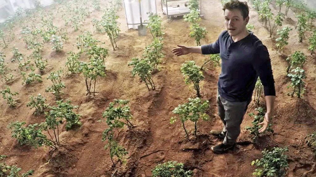 The-Martian-devine-realitate-Legume-cultivate-în-sol-extraterestru