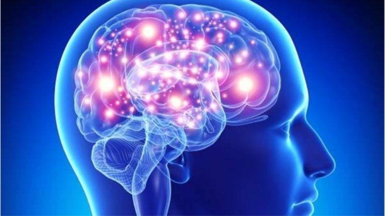 memoria misterele-creierului