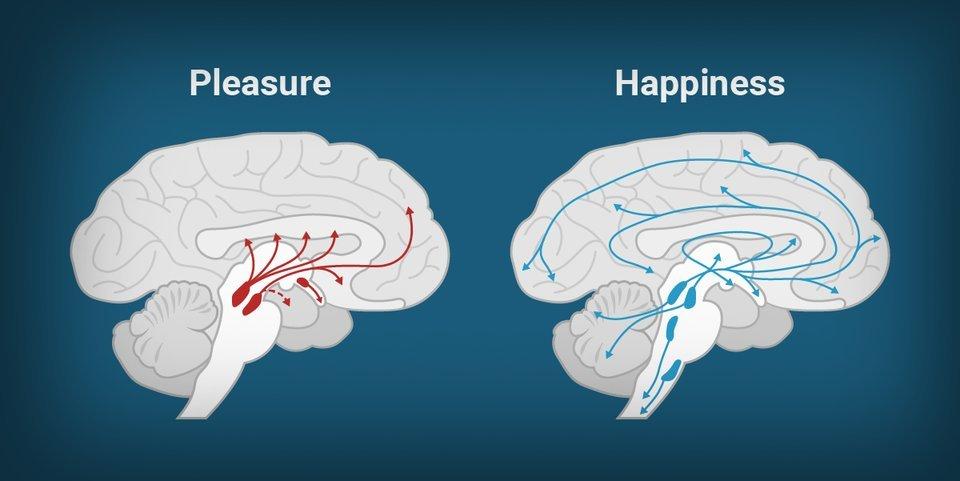 placere si fericire fericire-si-placere