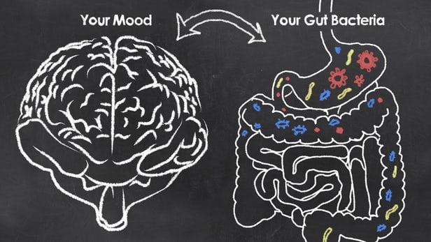 Depresia, cauzată de o bacterie intestinală? Un studiu bulversant