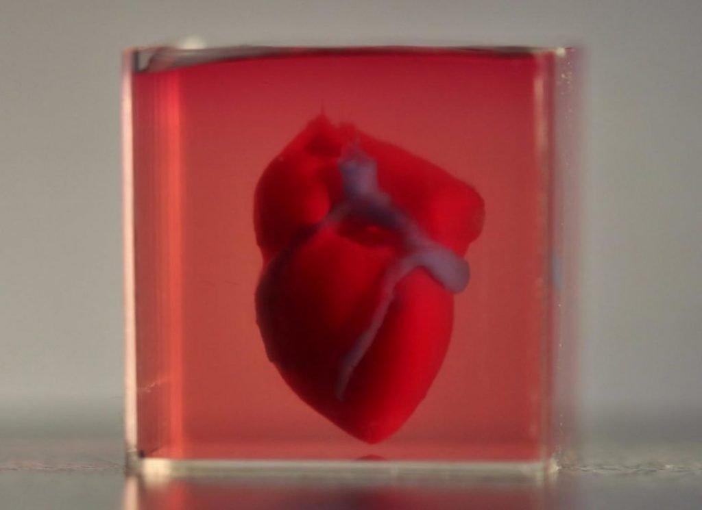 inimă artificială inima-artificială-3d